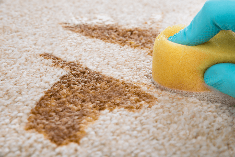 como-limpiar-alfombras-lavanderia-autoservicio